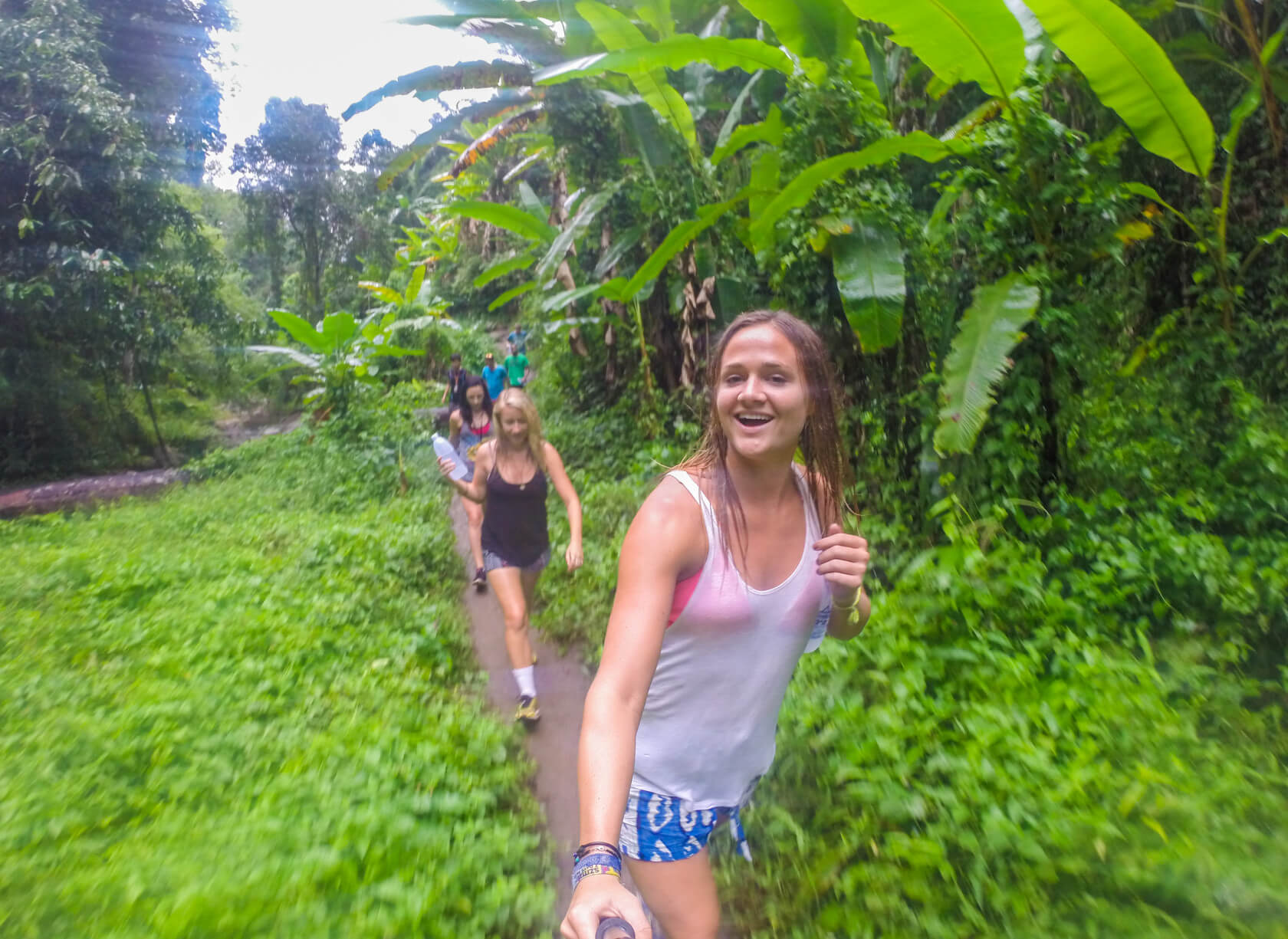 Chiang Mai elephant tour waterfall jungle trek