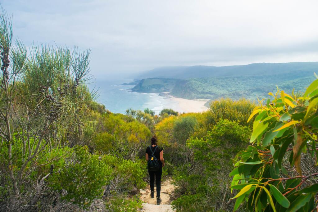 royal national park coastal track