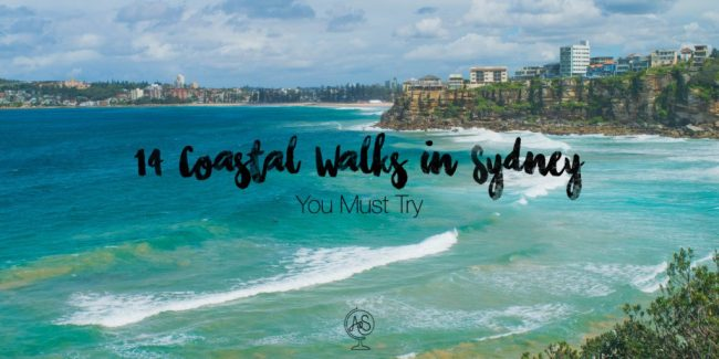 14 Super Scenic Coastal Walks in Sydney You Must Try