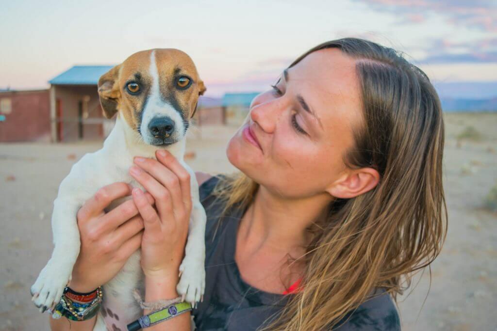 namibian road trip sossus desert camping dog