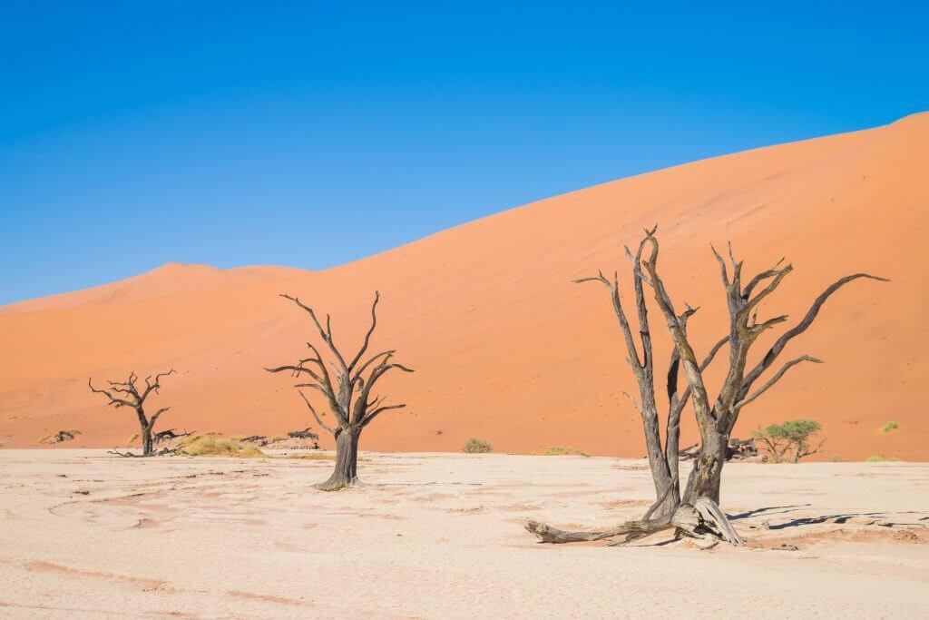 namibian road trip namib nakluft national park sunrise sand dunes sossusvlei
