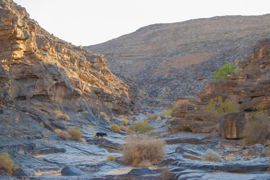 orange river rock formations south africa namibia