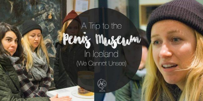 A Trip to the Penis Museum in Iceland We Cannot Unsee