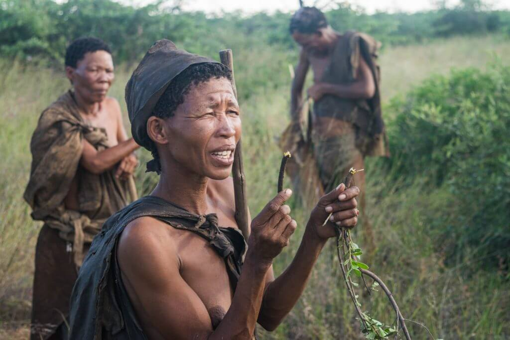 San Bushmen in Botswana walk with the San Bushmen culture and lifestyle