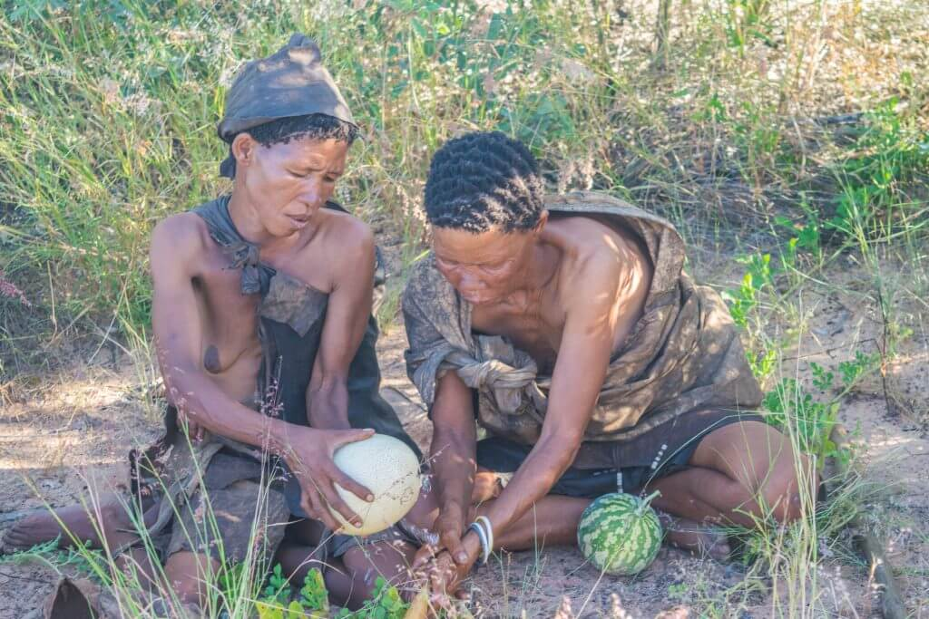 San Bushmen culture and lifestyle finding water