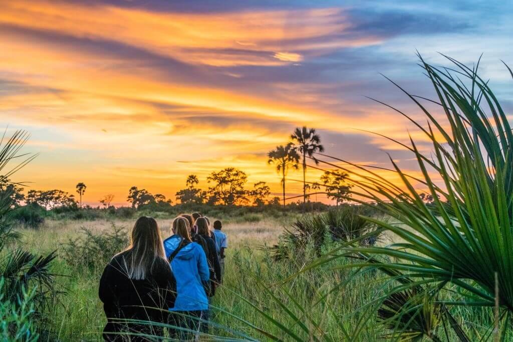okavango delta safari sunrise