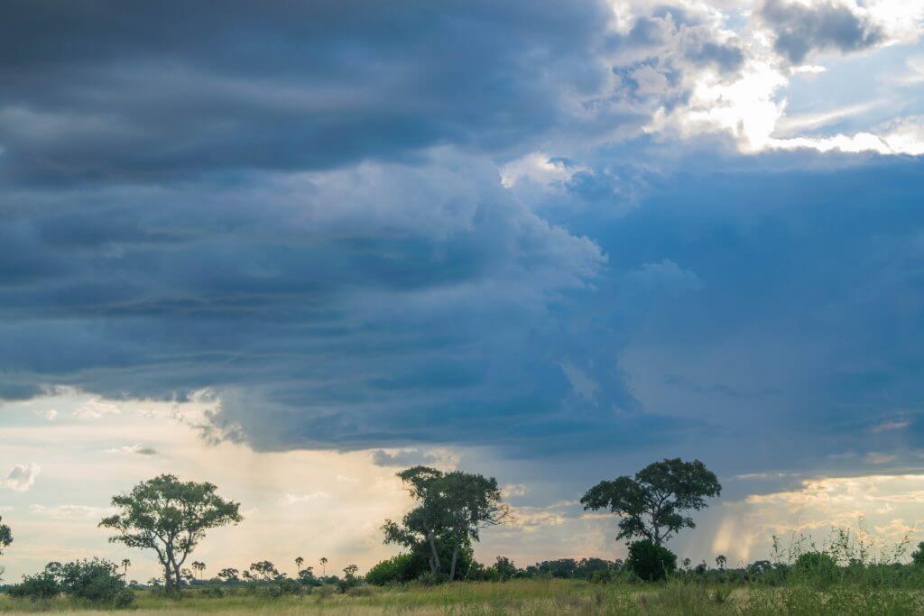 okavango delta rain