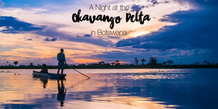 An Overnight Okavango Delta Safari in Botswana: Africa Travel Journal