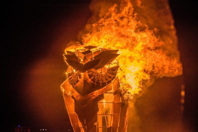Afrikaburn 2017 Owl burn