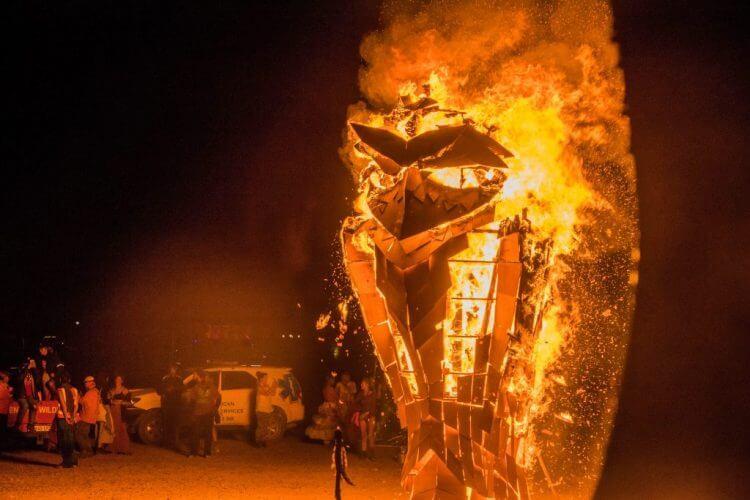 Afrikaburn art burn