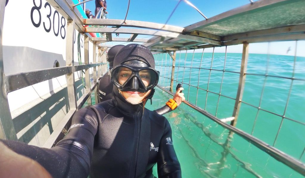 Eco-Conscious Shark Cage Diving in Cape Town with Marine Dynamics