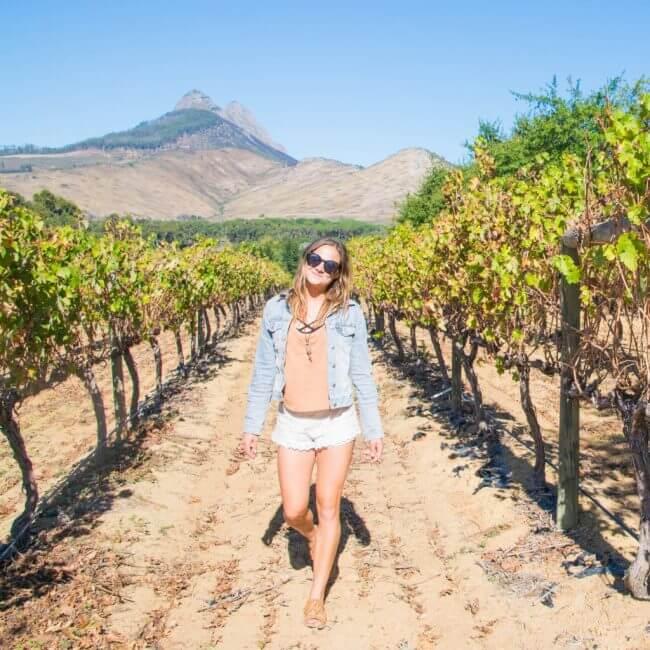 wine tasting cape town stellenbosch vineyards