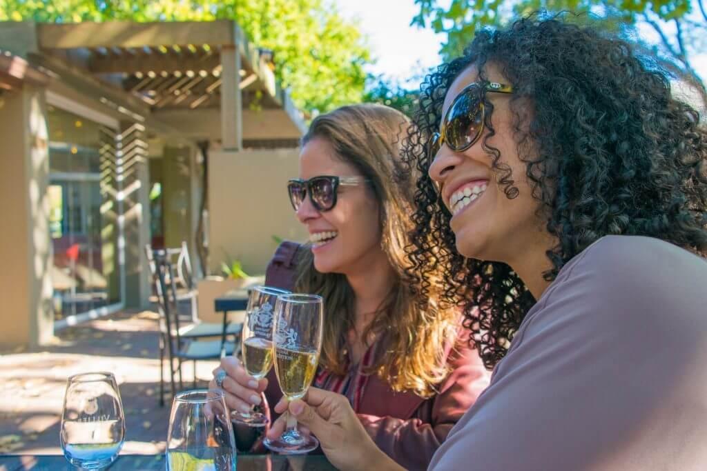 Wine Tasting in Cape Town Stellenbosch wine flies tours