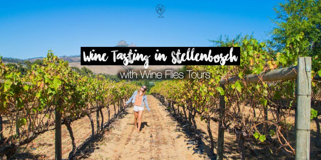 Wine Tasting in Cape Town: The Stellenbosch Region with Wine Flies