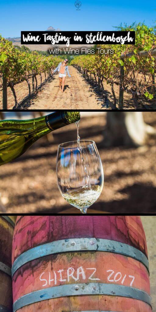 Wine Tasting in Cape Town Stellenbosch wine flies day tour from cape town