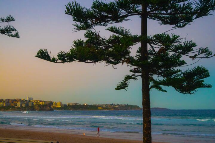 manly beach sunset spots