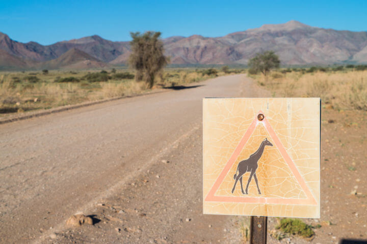 Namibia Road Trip itinerary giraffe crossing sign