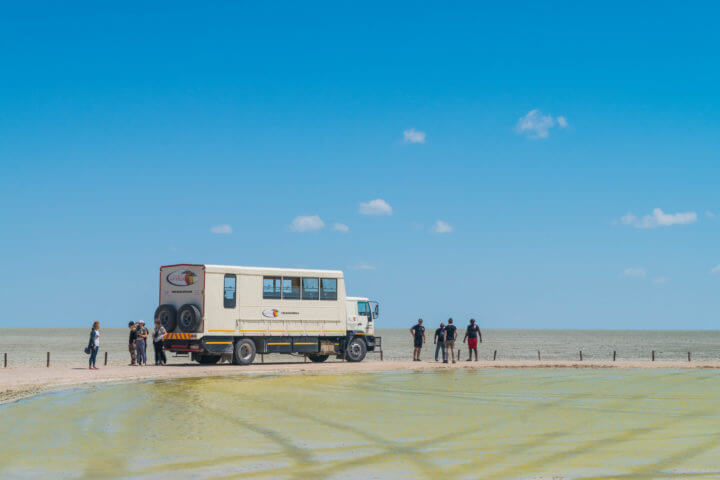 Namibia Road Trip acacia africa overland truck