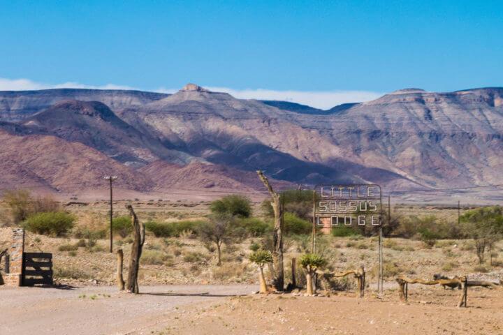 desert oasis namibia road trip little sossus camp namiib desert