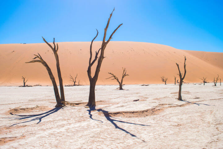 Namibia Road Trip itinerary deadvlei sossusvlei namib nakluft national park