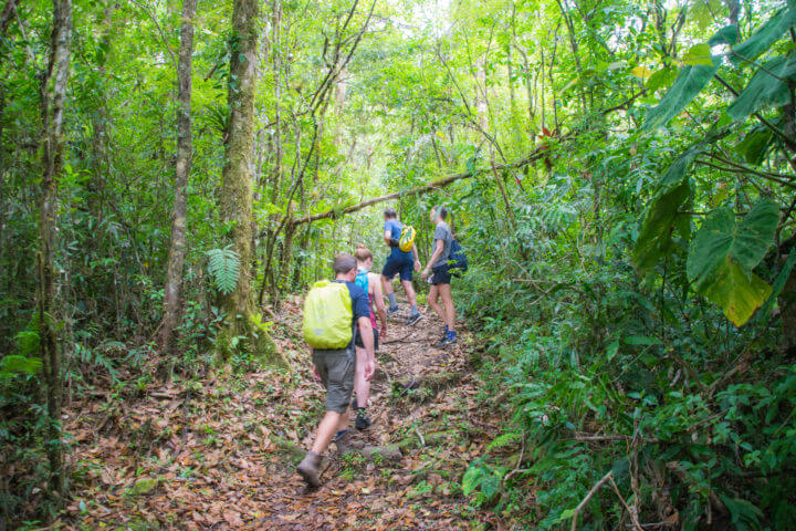lost and found hiking hostel in panama central america hiking hostel