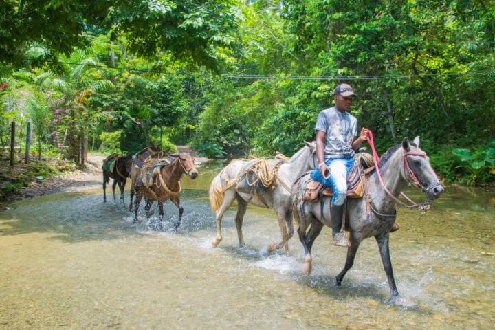 capurgana colombia horse drawn carts el cielo