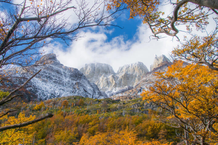 patagonia in fall torres del paine