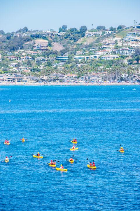 la jolla kayaking san diego