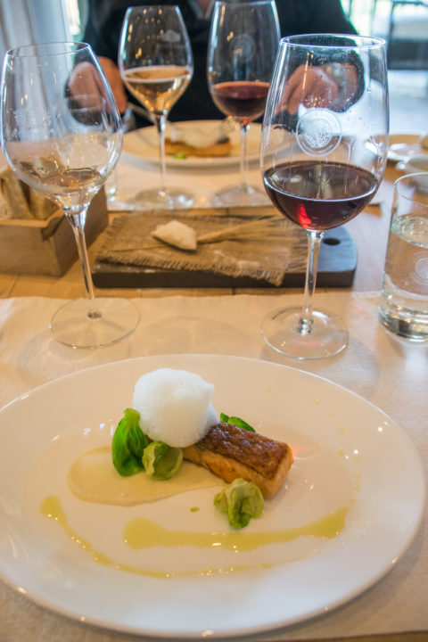 wine tasting in MEndoza, Argentina - 5 course meal pairing with food and wine