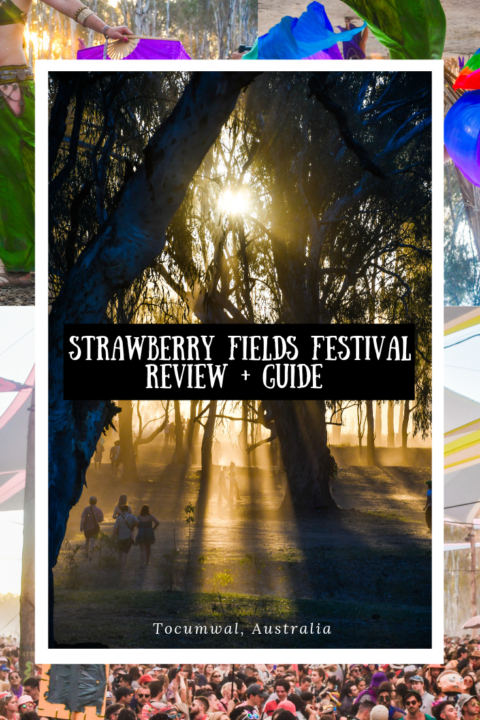 Strawberry Fields Festival Review + Guide in Tocumwal, Australia on the banks of the Murray River in 'the Wildlands,' an amazing camping music festival/bush doof on the border of New South Wales and Victoria!