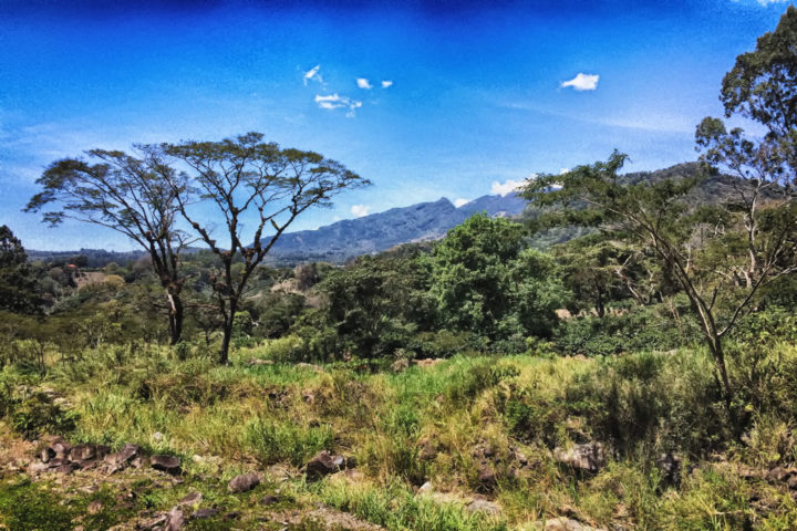 Boquete: A Guide to Panama's Adventure Capital