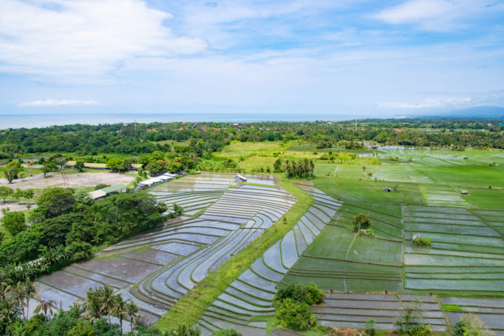 bali helicopter ride rice paddies best view in bali