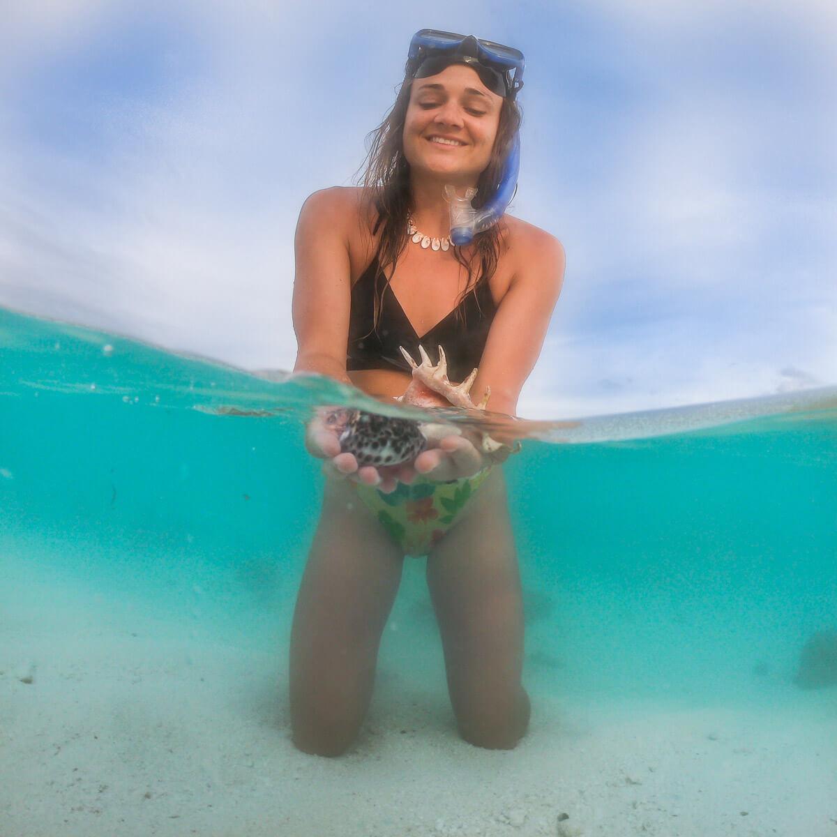 solomon islands shells snorkeling munda roviana lagoon